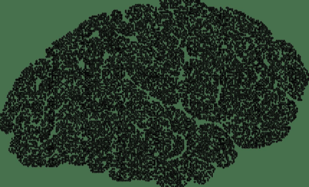brain-2789679_1280