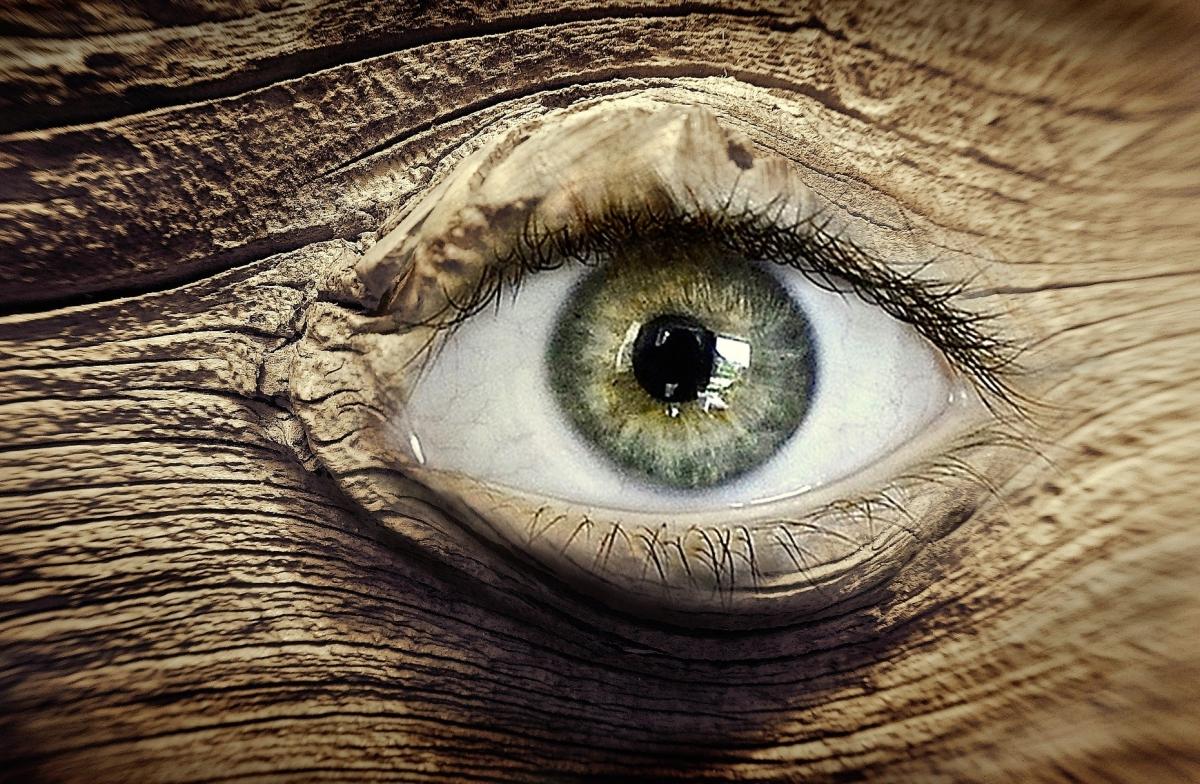 eye-2205889_1920.jpg